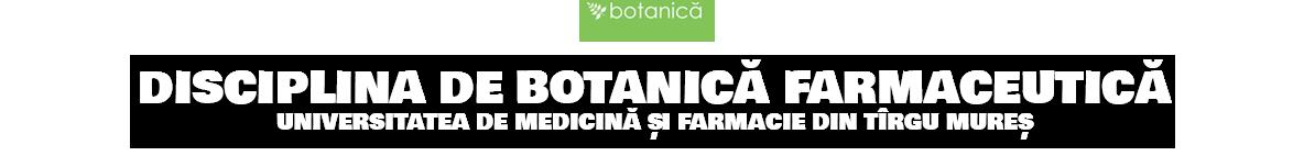 Disciplina de Botanică Farmaceutică